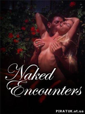Несподівана зустріч / Неожиданная встреча / Naked Encounters (2005)